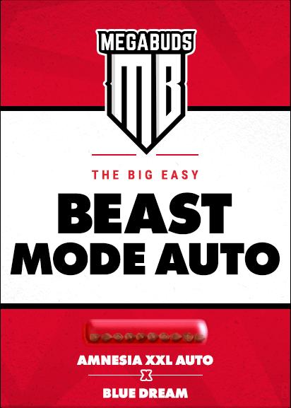 Beast Mode Auto Feminised Seeds