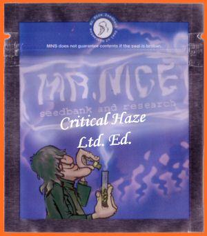 Critical Haze Regular Seeds - 18