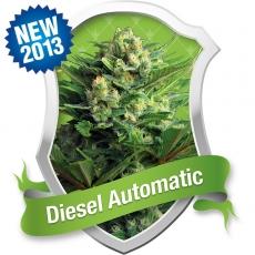 Diesel Auto Feminised Seeds
