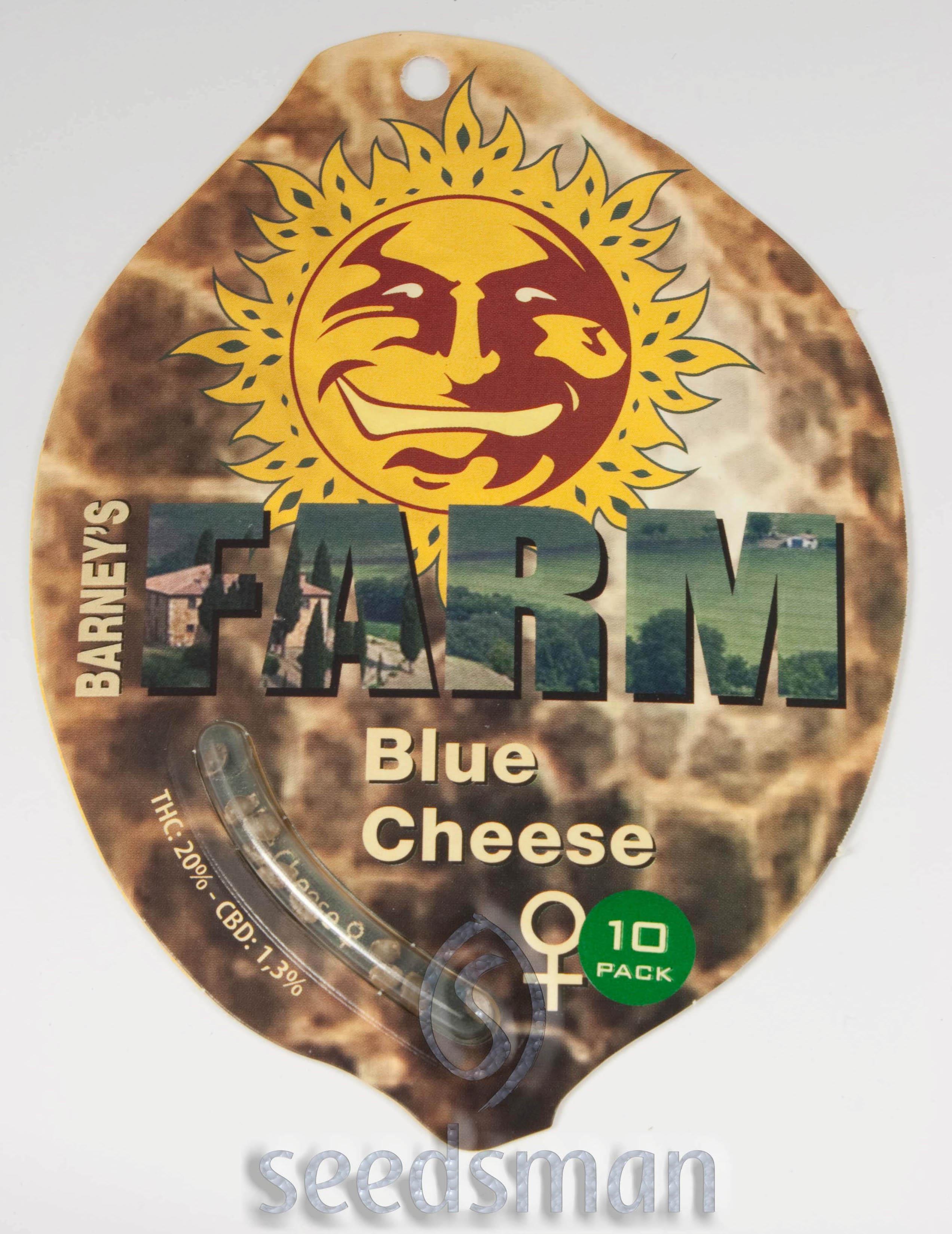 Blueberry Cheese Feminised Seeds