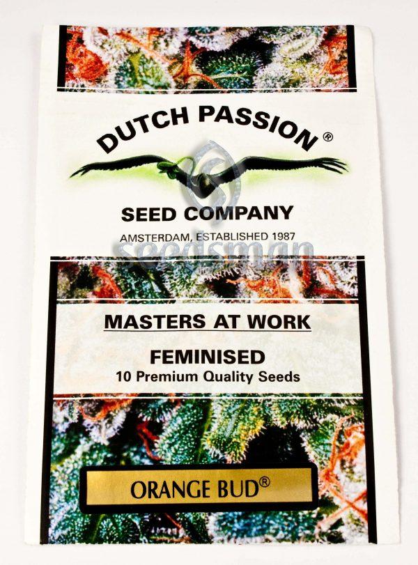 Orange Bud Feminised Seeds
