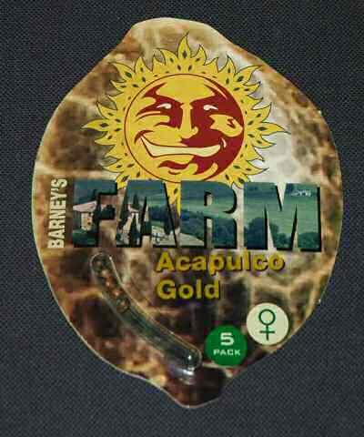 Acapulco Gold Feminised Seeds