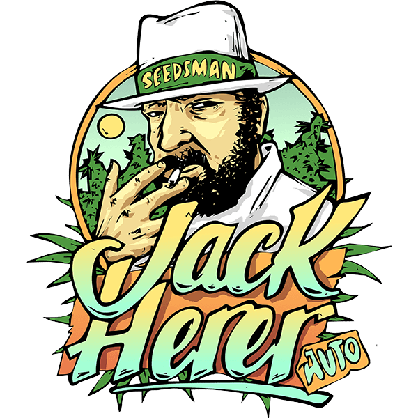 Jack Herer Auto Feminised Seeds