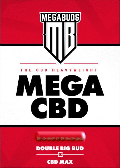 Mega CBD Feminised Seeds