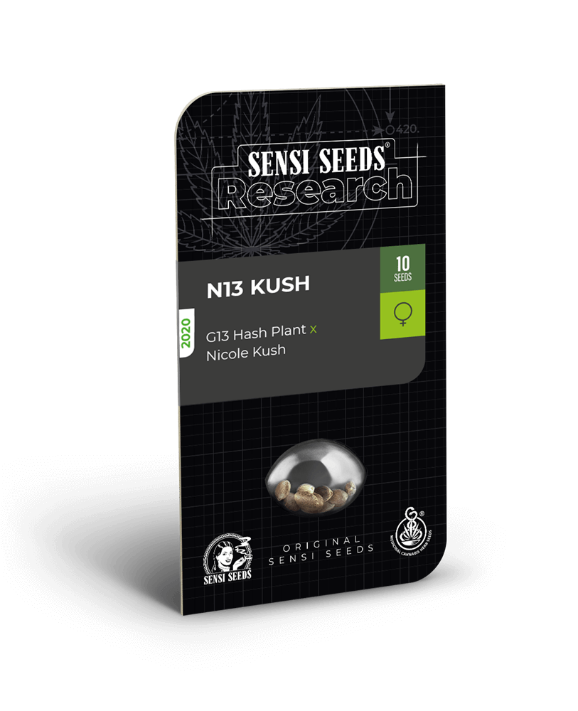 N13 Kush Feminised Seeds