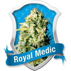 Royal Medic Feminised Seeds