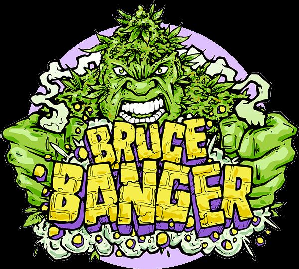Bruce Banger FAST Feminised Seeds
