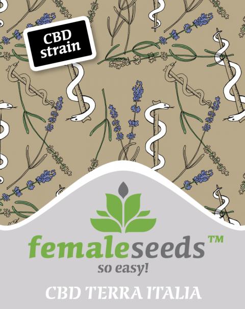 Terra Italia CBD Feminised Seeds